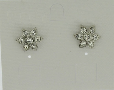 EARRINGS PIN